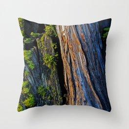 Ancient Throw Pillow