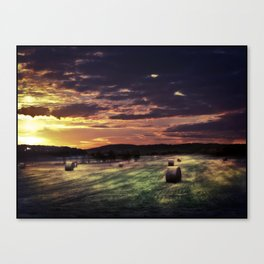 Strange Fields Canvas Print