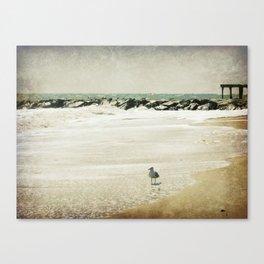 Sea Dream Canvas Print