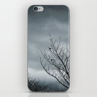 Your Coldness iPhone & iPod Skin