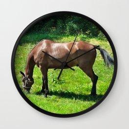 A Grazing Horse Wall Clock