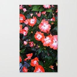 Pink Pleasures Canvas Print