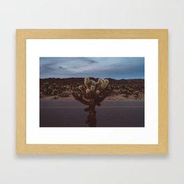 Cholla Cactus Garden XVI Framed Art Print