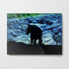Paint Horse Free Again Metal Print