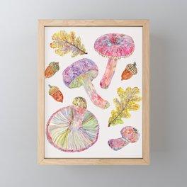 Russulas and Oak - Botanical Framed Mini Art Print