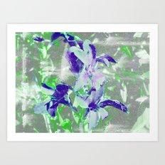 FlowerPower Fantasy 5-B Art Print
