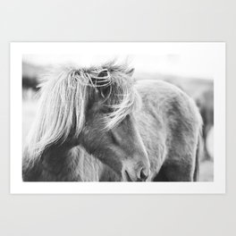 Modern Rustic Horse Art Print