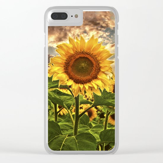 Sunflowers at Sunset Clear iPhone Case