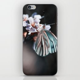 butterfly #2 iPhone Skin