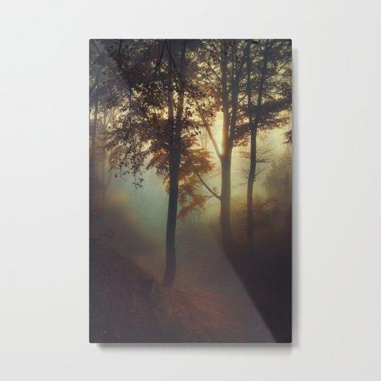 Fog Pit -  Misty Sunrise Metal Print