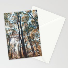 into the woods 06 Stationery Cards