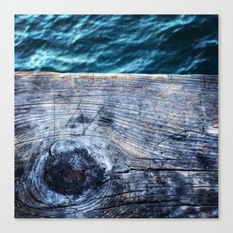 Wood and water Canvas Print