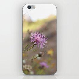 Purple Flowers Vintage on the Beach iPhone Skin
