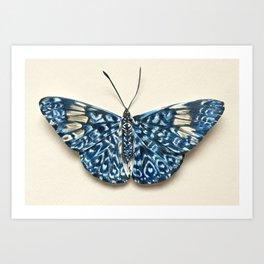 Firecracker Butterfly Art Print