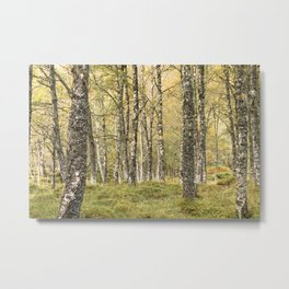 The romance of trees Metal Print