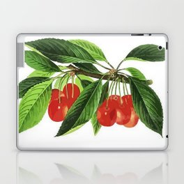 Red Cherries Vector on White Background Laptop & iPad Skin