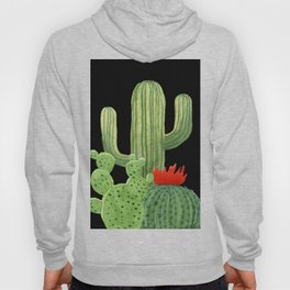 Perfect Cactus Bunch on Black Hoody