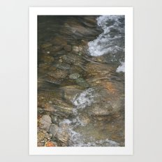Natural Mosaic 1 Art Print