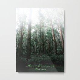 Mount Dandenong, Victoria Metal Print