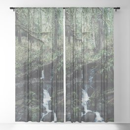 California Redwood Rainforest - Nature Photography Sheer Curtain