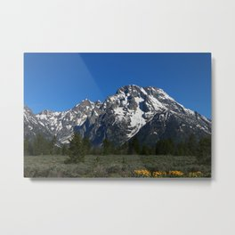 Beautiful Grand Teton View Metal Print