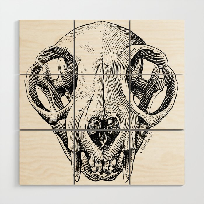 Cat Skull illustration Wood Wall Art