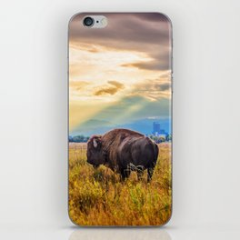 The Great American Bison iPhone Skin