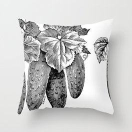 WESTERFIELD'S CHICAGO PICKLE CUCUMBER. PEERLESS WHITE SPINE (1899) Throw Pillow