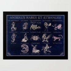 Strange and seldom animals Art Print