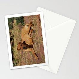 """""""Born Free"""" from the photo series, """"My dog, PLaY-DoH"""" Stationery Cards"""