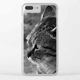 Strelka Clear iPhone Case