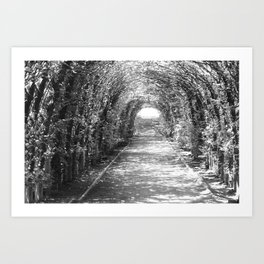 Garden Tunnel Art Print