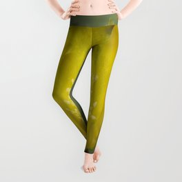 Yellow Cactus Pear Flower Leggings