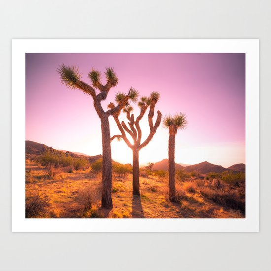 Three Sisters at Sunset- Joshua Tree Edition by youhavemagic