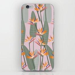Bird of Paradise - pink iPhone Skin