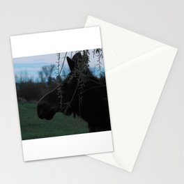 Missy Evening profile Stationery Cards