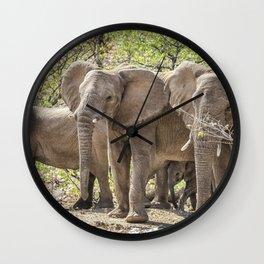 Desert Elephants of Damaraland, Namibia Wall Clock