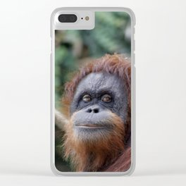 Orang 519-1 Clear iPhone Case