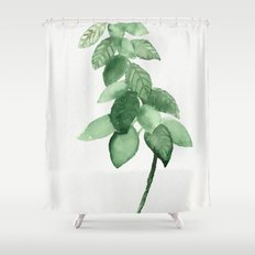 Plant 3 Shower Curtain