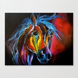 Colorful Roan Canvas Print