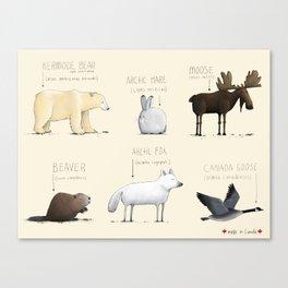 Canadian Animals Canvas Print