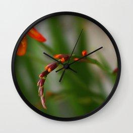 Crocosmia Wall Clock