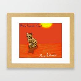 Black Footed Cat Framed Art Print