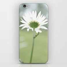 Boxed faith Daisy iPhone & iPod Skin