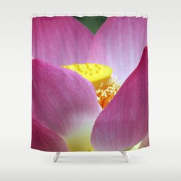 Peek-a-boo Beauty Shower Curtain