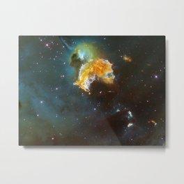 605. Supernova Remnant Menagerie Metal Print