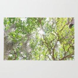 Charleston Moss Rug