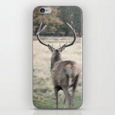 Deer III iPhone & iPod Skin