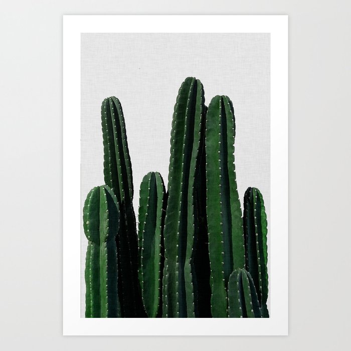 Cactus I Kunstdrucke