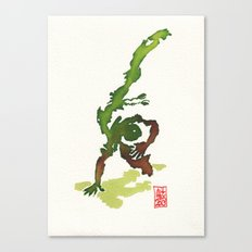 Capoeira 359 Canvas Print